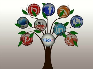 tree-1090854_640